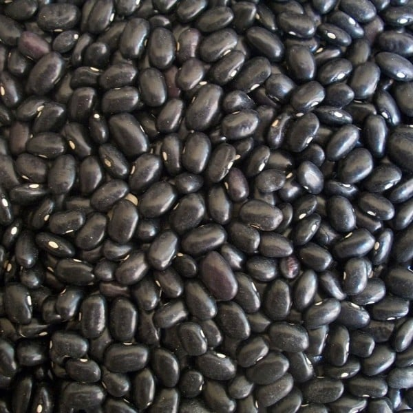 black-beans-14522