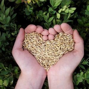 Organic Oat, Cereals & Muesli