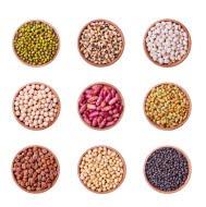 Organic Beans & Pulses