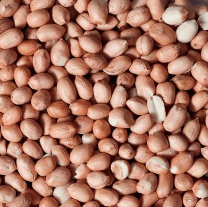 Org Peanut