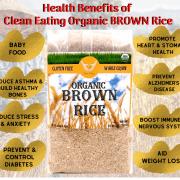 HEALTH BENEFITS OF ORGANIC BLACK RICE-3